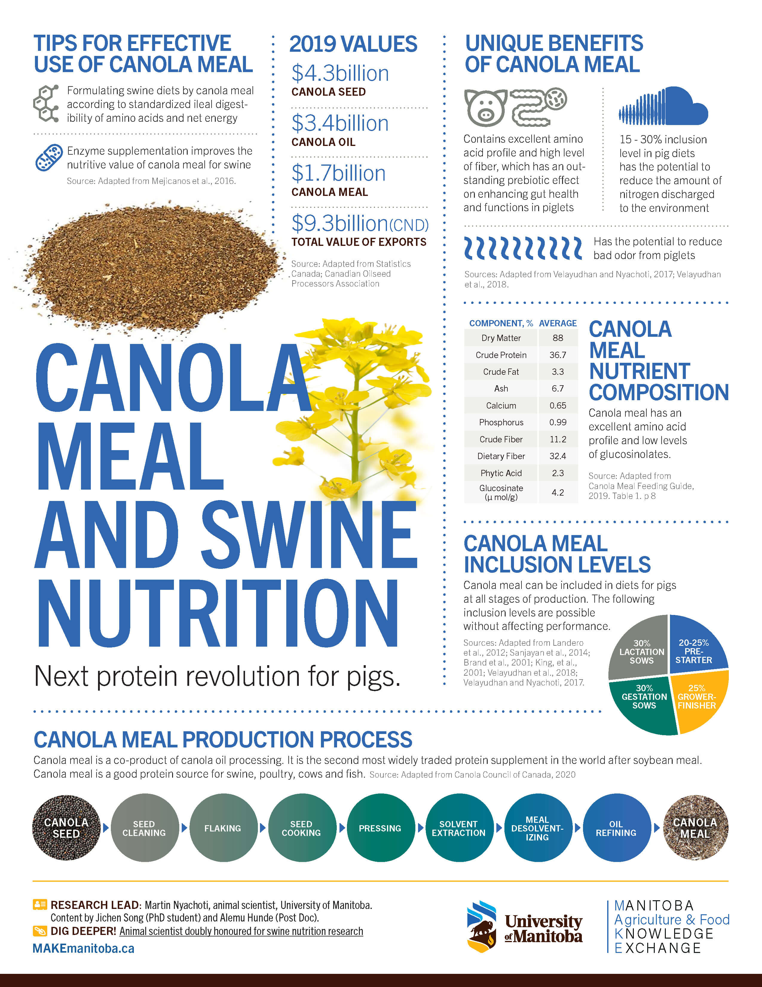 MAKE infographic canola and swine health