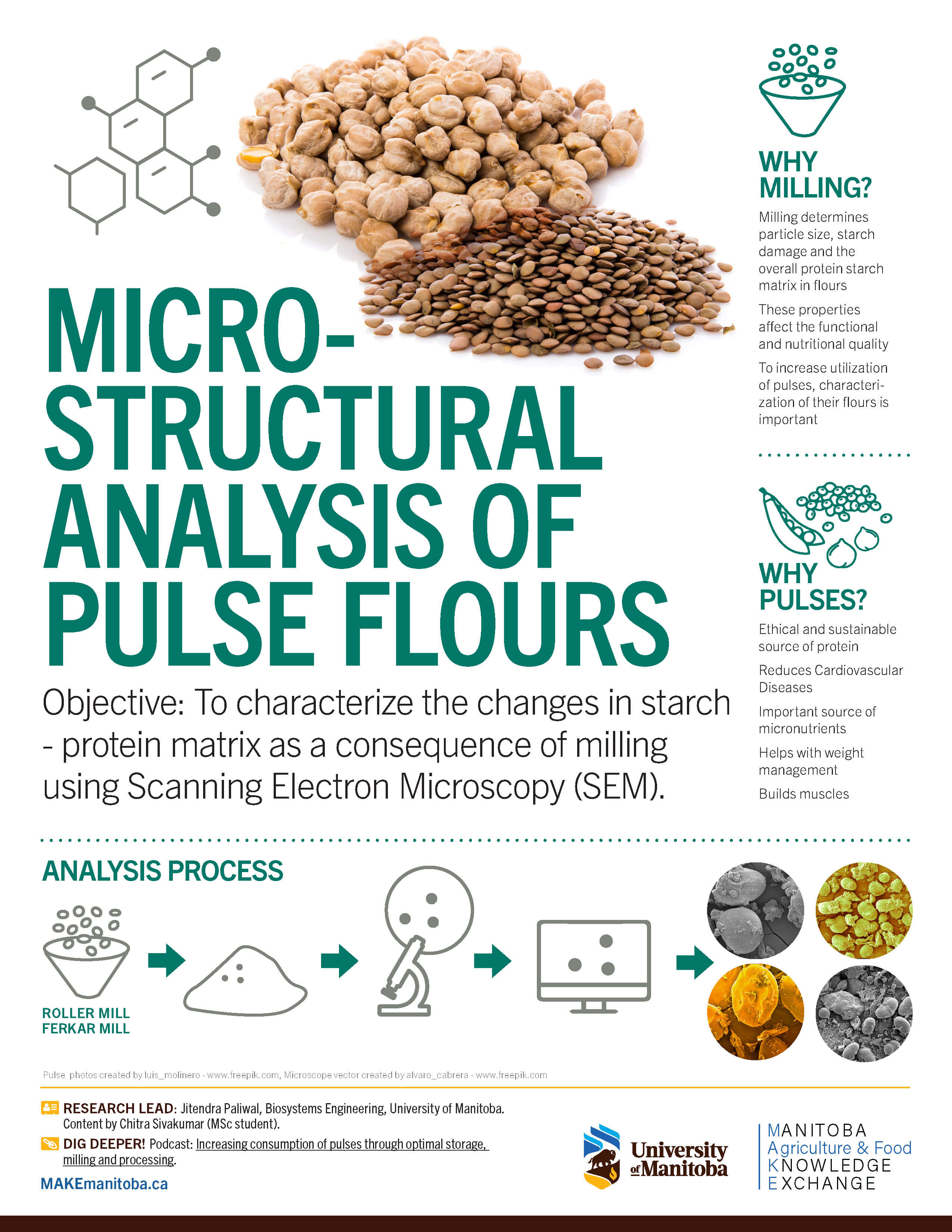 MAKE infographic pulse milling