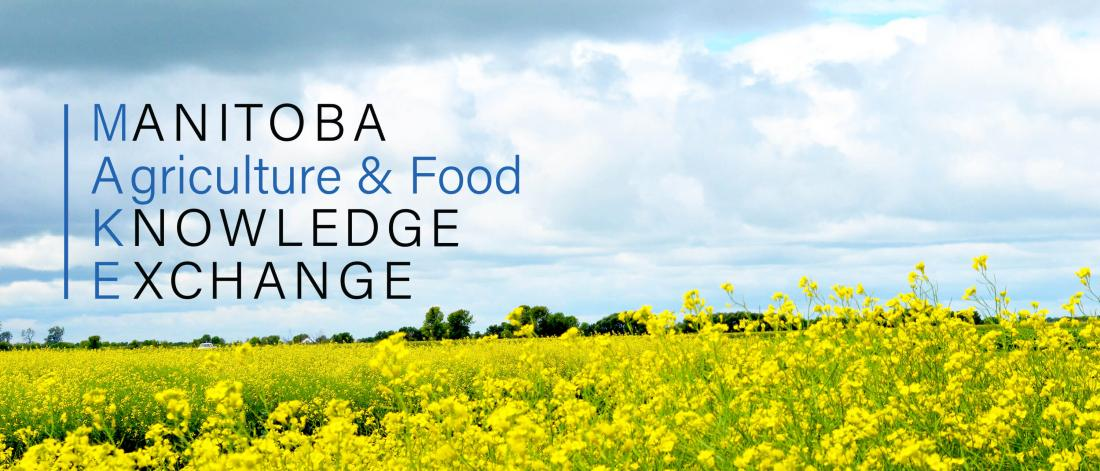 Manitoba Agriculture and Food Knowledge Exchange logo over a canola field.
