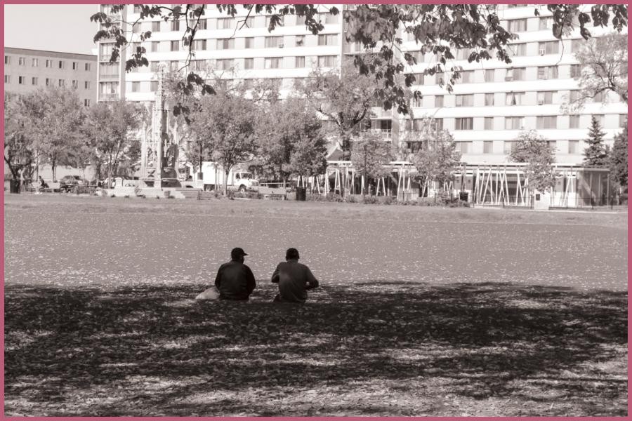 people sitting side by side in a park