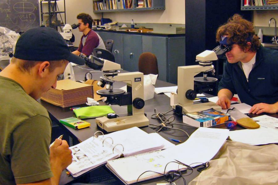 Faculty of environment students work in a lab.