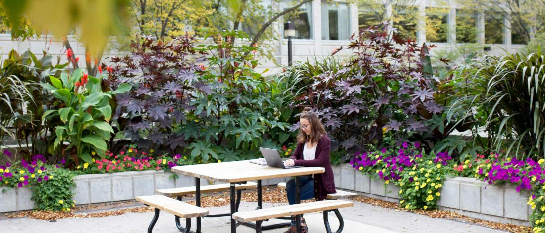 A student works on a laptop while seated at an outdoor table surrounded by flowers.