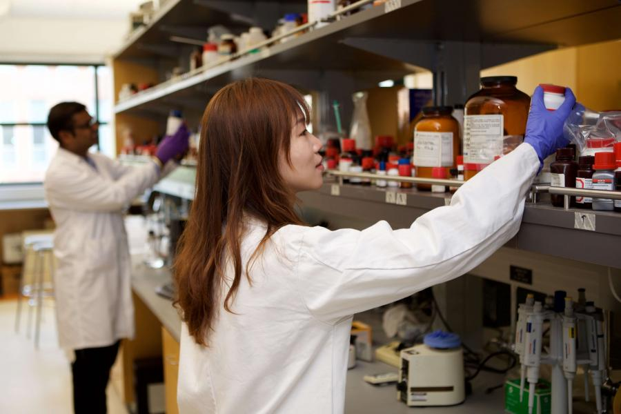 Female student chooses chemicals from a shelf in a pharmacy lab