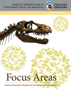 focus areas button 1