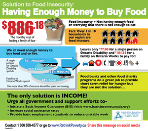 Solution to food insecurity - infographic