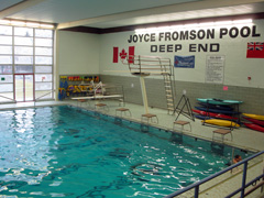 Joyce Fromson Pool Deep End