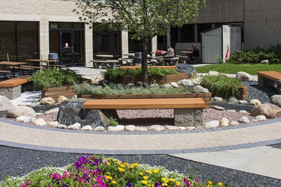 The Medicine Garden of Indigenous Learning features trees, shrubs and benches for sitting.