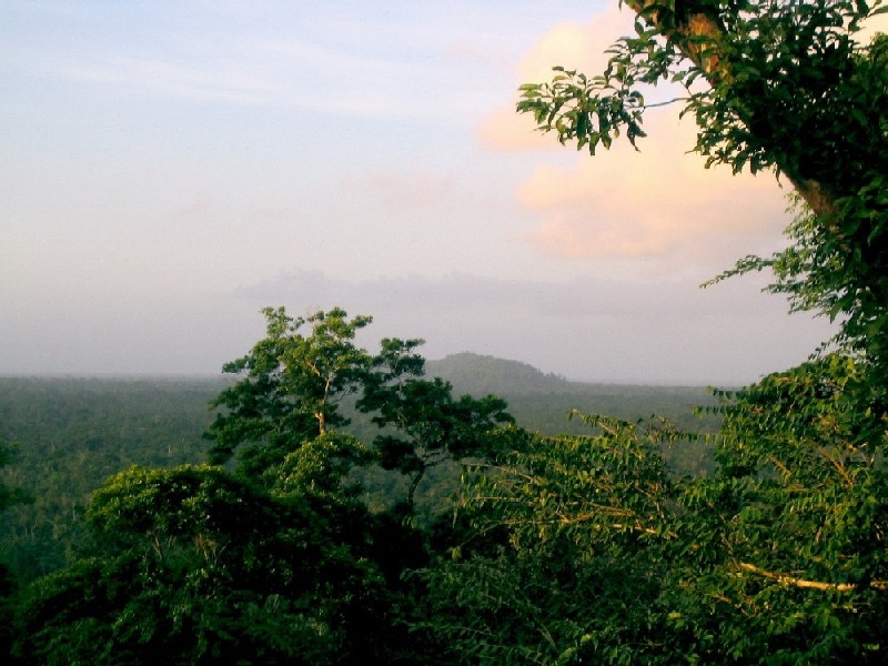 Natural Resources In Belize
