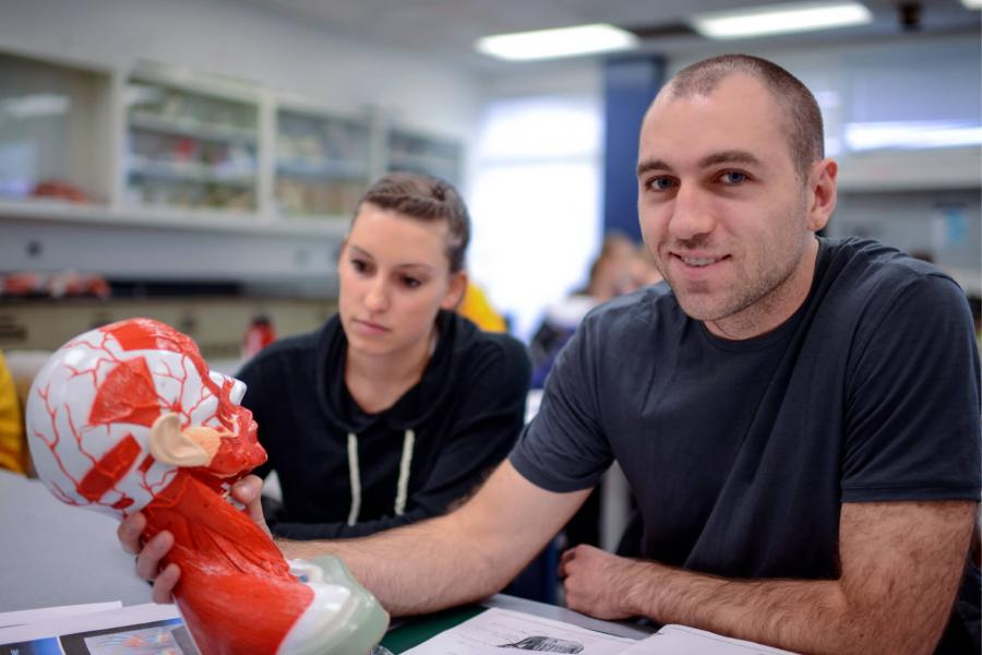 Two kinesiology students sit at a table together and study a model of the human head.