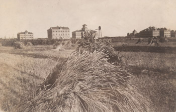 "Photo, ""A Good Shock"", M.A.C. buildings in the background"