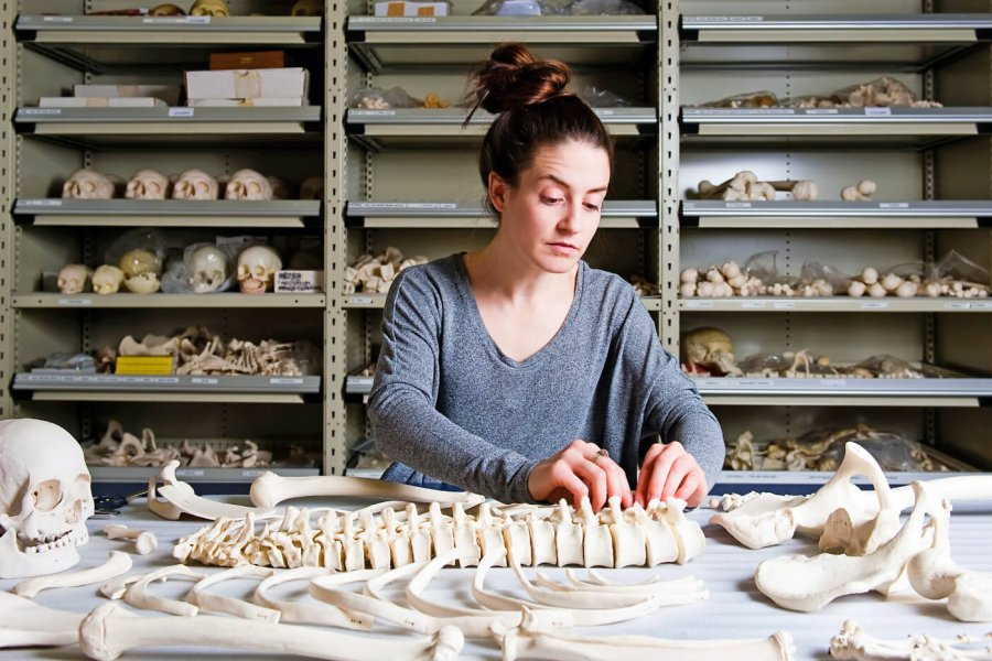 A University of Manitoba graduate studies student working with a human skeleton.