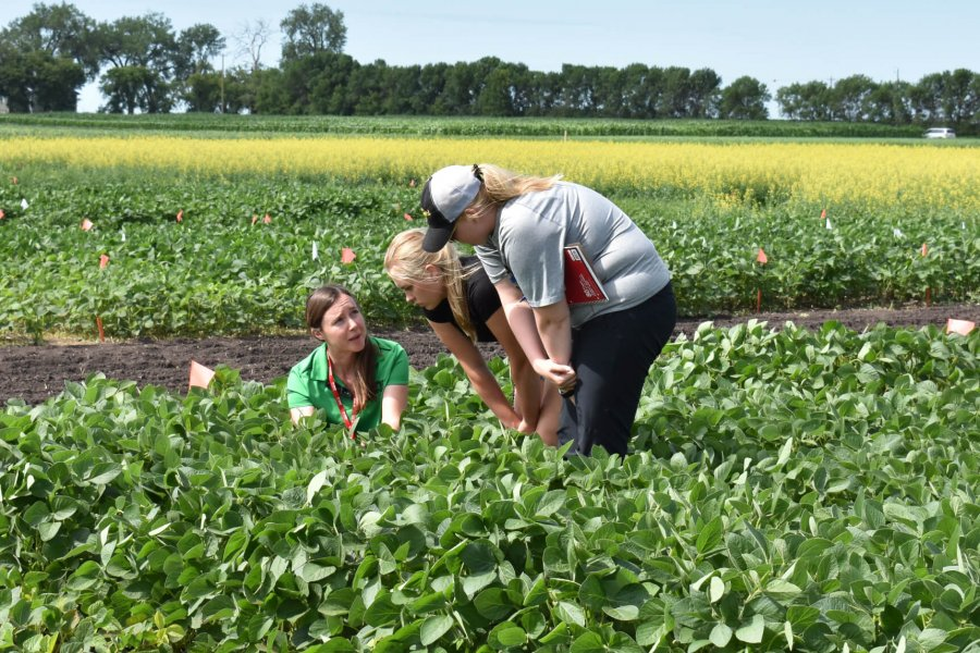 KRISTEN MACMILLAN WITH DIPLOMA STUDENTS IN THE SOYBEAN FIELD AGRONOMY COURSE