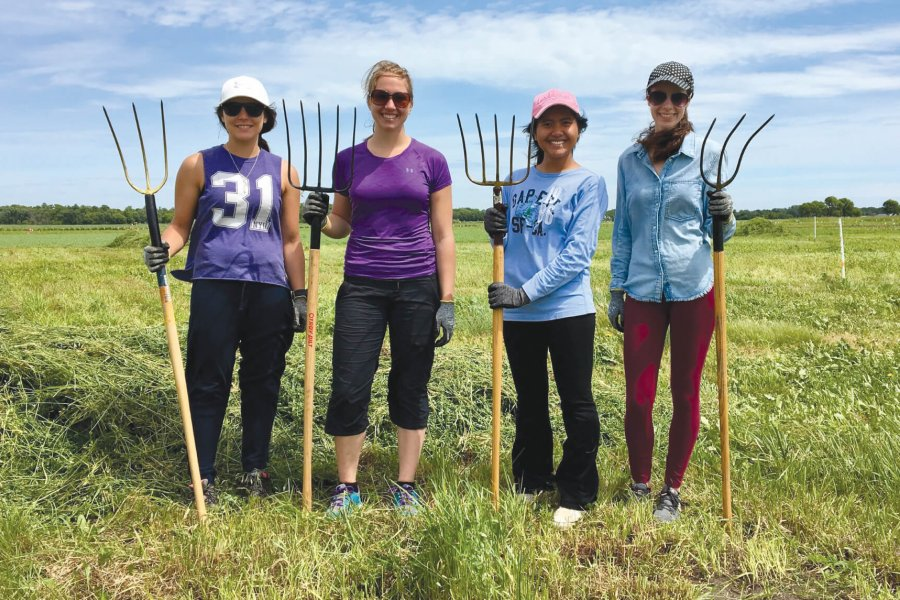 Four Agriculture Co-op students working in a field.
