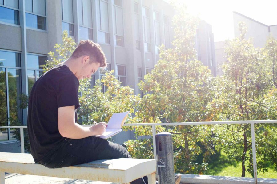 Student sitting in the sunshine working on a laptop
