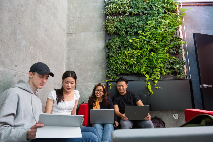 Four students studying together in a student lounge area with a large green living wall behind them.