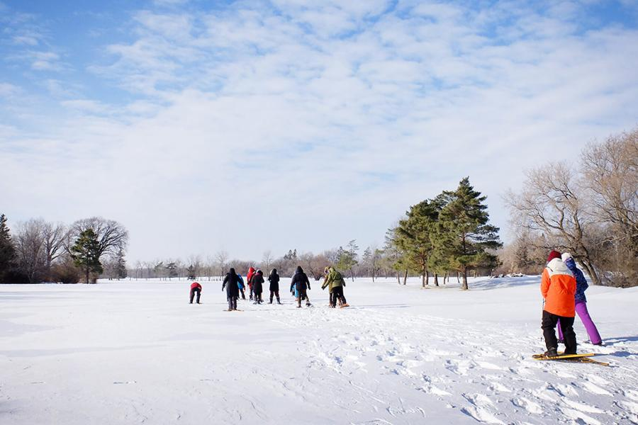 A group of people participate in the Jack Frost Challenge by snowshoeing in an open area at the University of Manitoba Fort Garry campus.